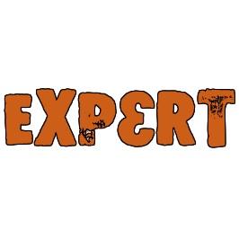 Панели Expert